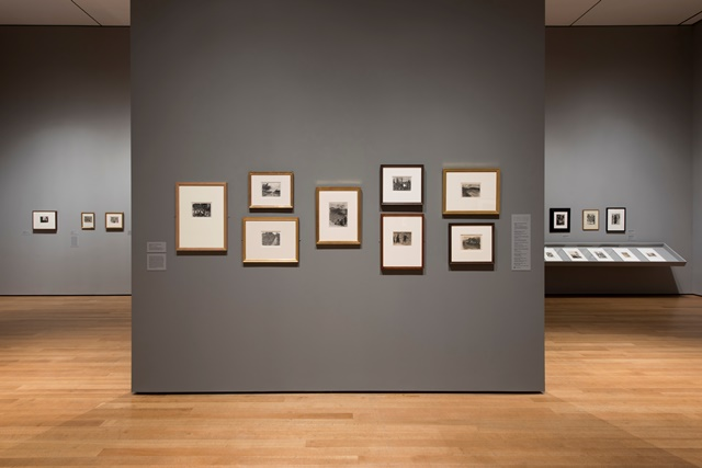 Edgar Degas | Installation View | Artist's Network