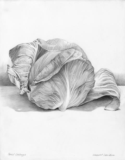 Drawing Magazine, Spring 2016 | Margaret Davidson | Artist's Network