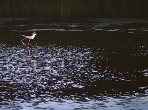 pastel-bird-Symphonie du Marais II (pastel) by Lionel Asselineau | artistsnetwork.com