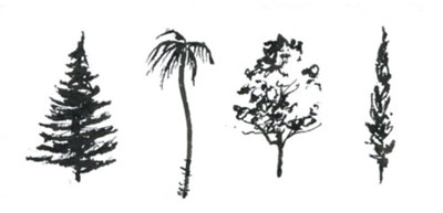 How to draw trees | Cathy Johnson, ArtistsNetwork.com