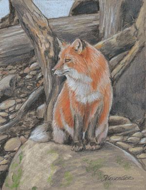 Colored pencil drawings | Mark Menendez, ArtistsNetwork.com