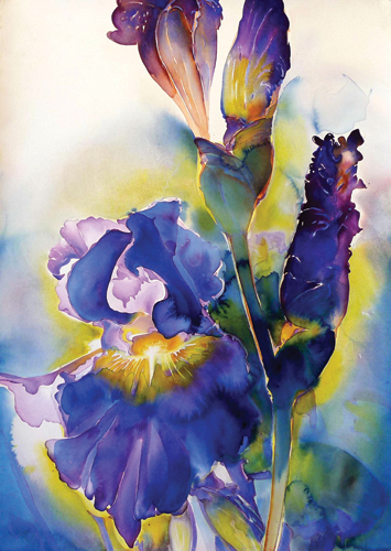 watercolor_floral_Burst_40x30_Carol_Carter | artistsnetwork.com