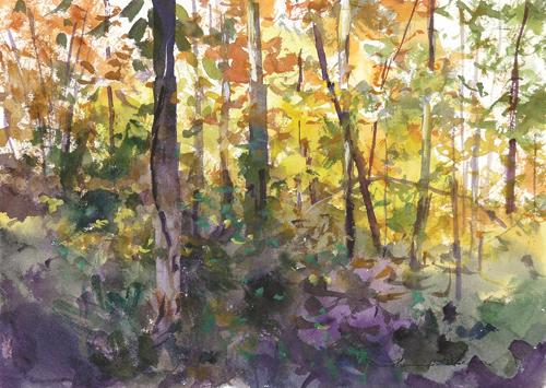 Thomas McNickle's color study | watercolor landscapes
