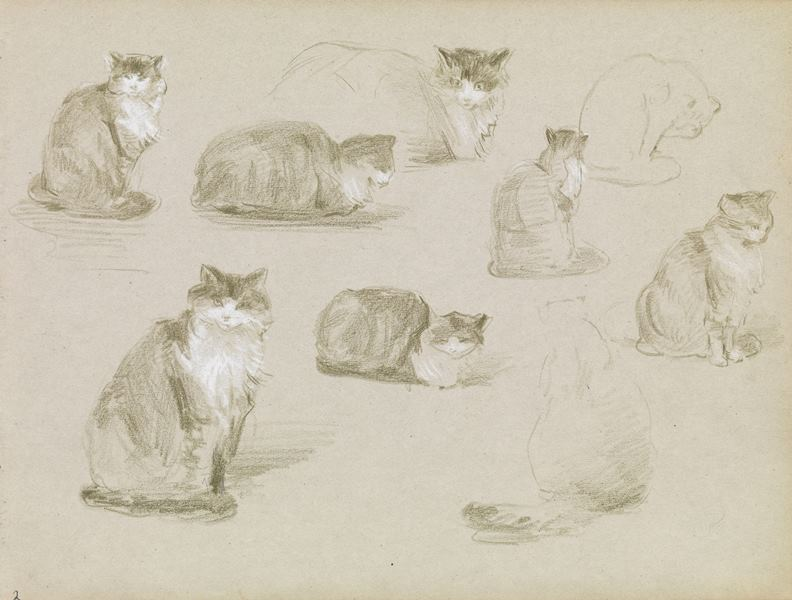Elizabeth Nourse | Artist's Network | Drawing Cats