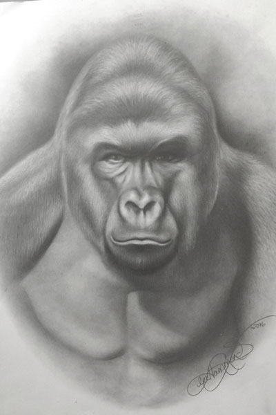 In memory of Harambe | Lee Hammond, ArtistsNetwork.com