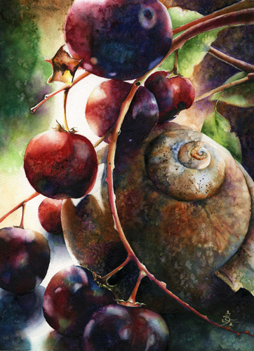 Uncommonplace Wild Cherry & Snail Shell by Sidra Kaluszka | up and coming artists