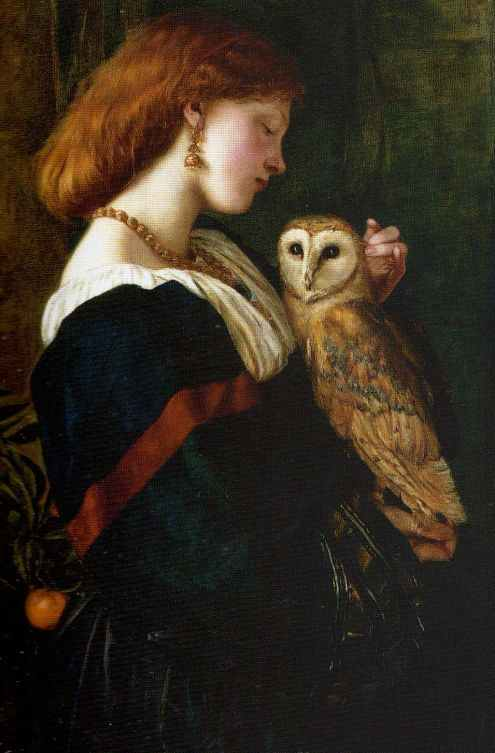 Bird painting: Il Barbagianni The Owl by Valentine Cameron Prinsep, oil on canvas, 1863.