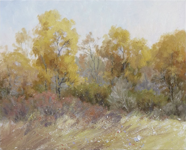 Johannes Vloothuis, acrylics, acrylic landscapes, wildflowers, flowers & grasses demonstration