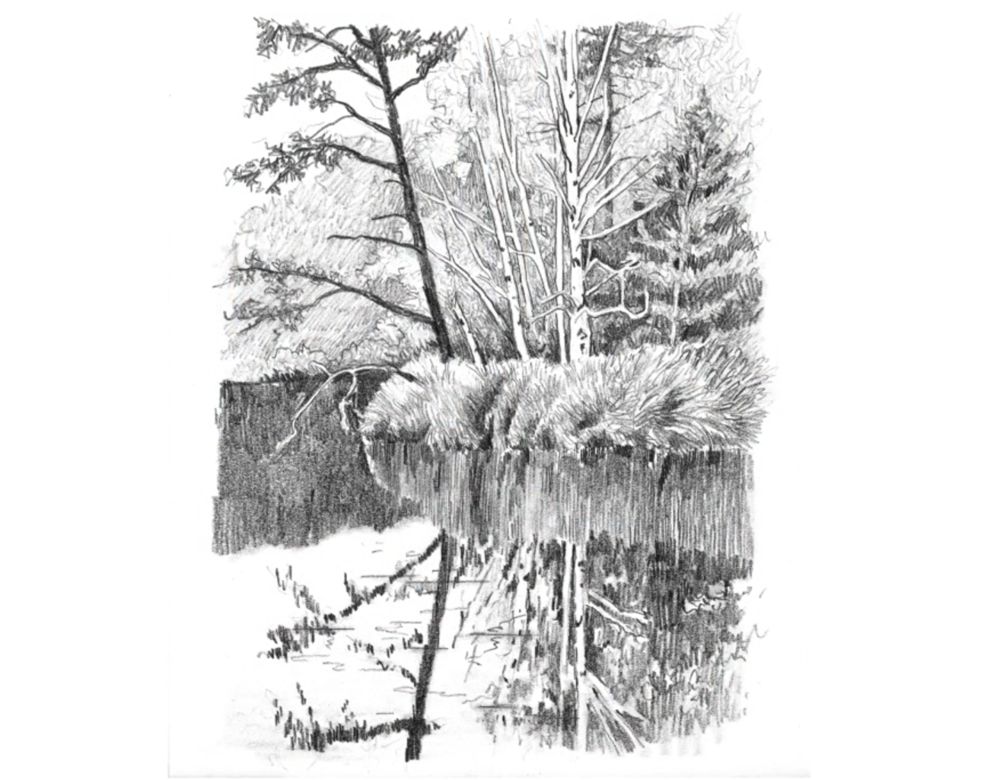 Draw reflections in still water with parallel pencil strokes for stunning landscape pencil drawings