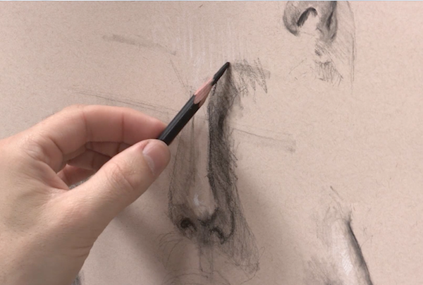 Learn To Draw, Portraits, Drawing Portraits, Alain Picard, Video Demonstration, Drawing Demonstration, The Portrait, Drawing the Nose, Drawing Noses