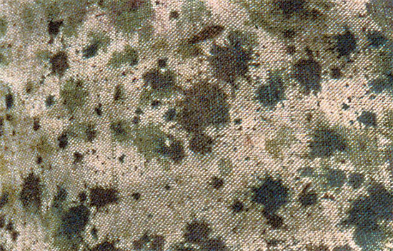 Hand painted French camouflage by Eugene Corbin, 1914.