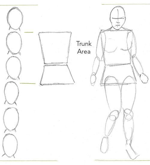 Drawing Beginner Figure Measurements