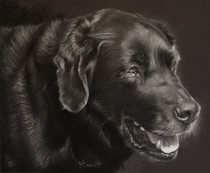 plume-pastel-by-melissa-breault -- Learning the right skills when painting from photographs.