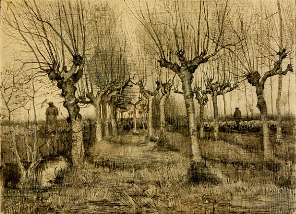Pollard Birches by Vincent van Gogh | A List of 10 Master Drawers, and What They Teach Us | Drawing magazine | Artist Daily