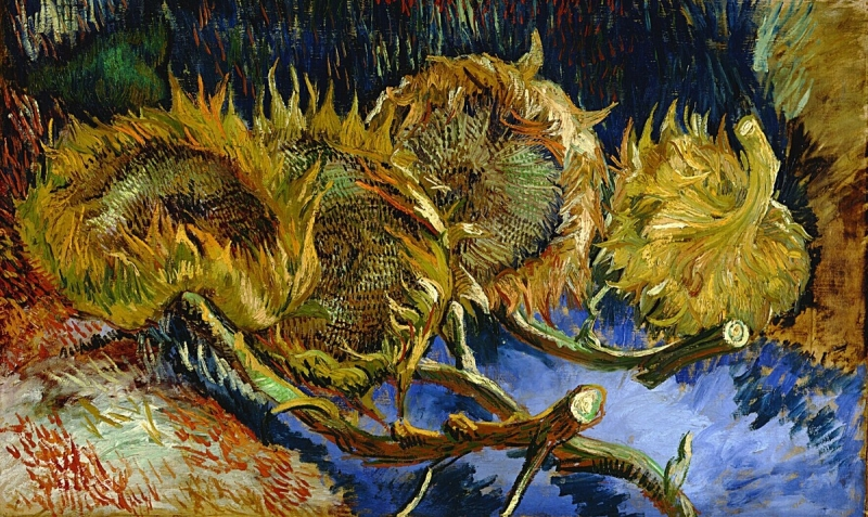 Sunflowers | Vincent van Gogh | The Artist's Road | Art History | Artist Daily