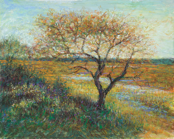 Fall Trees | Pastel Artist | Tom Bailey | Artists Network