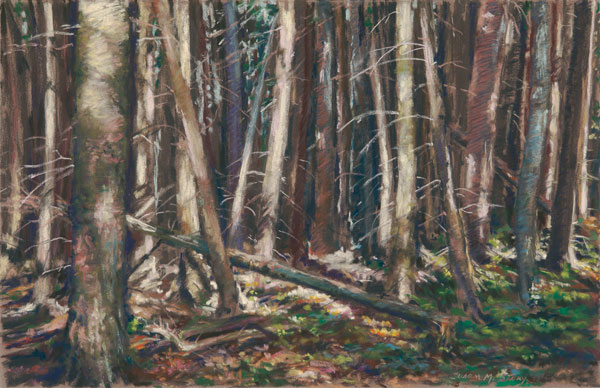 Fall Trees | Pastel Artist | Susan M. Story | Artists Network