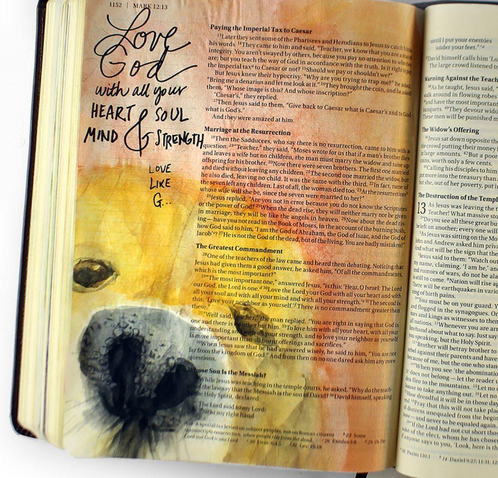 bible journal dog