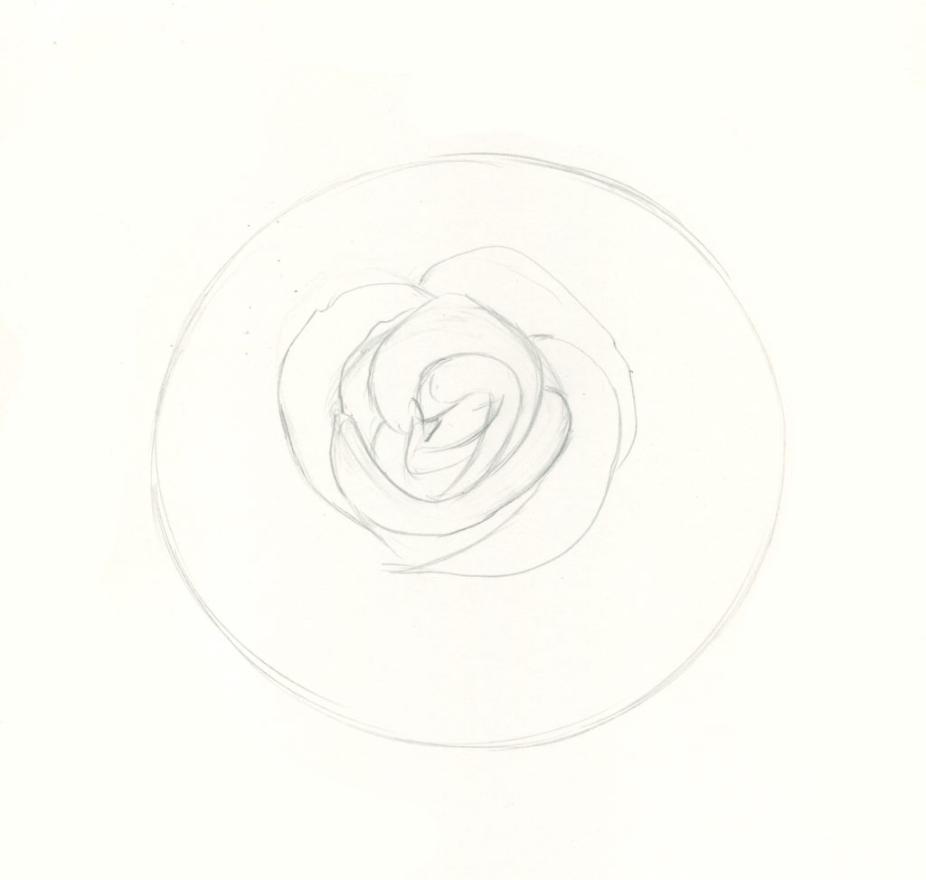 How To Draw Roses An Easy And Complete Step By Step Drawing Demo