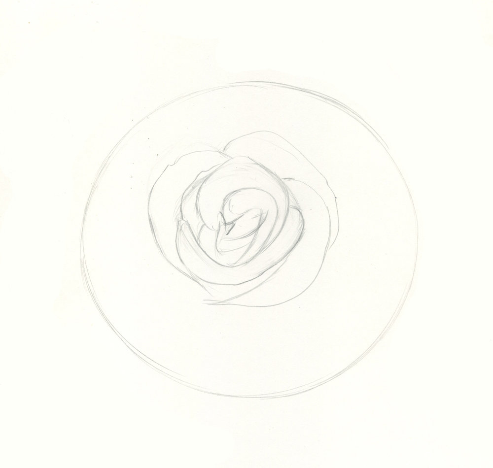 How to draw roses step 3