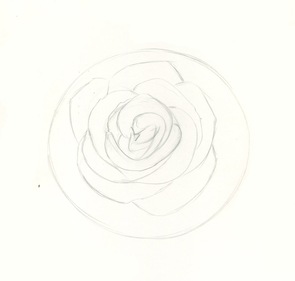 how to draw roses step 4