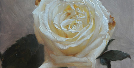 A Rose for Puerto Rico by Katie Whipple, oil on panel. I painted and auctioned off this piece as a fundraiser for Puerto Rican hurricane relief after Hurricane Maria. Donations are still being accepted at hispanicfederation.org/donate.