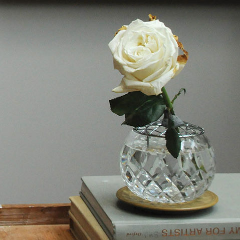 How to paint a rose, model
