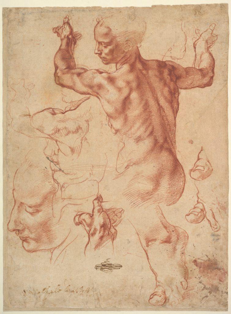 Studies for the Libyan Sibyl by Michelangelo Buonarroti, 1510-11.