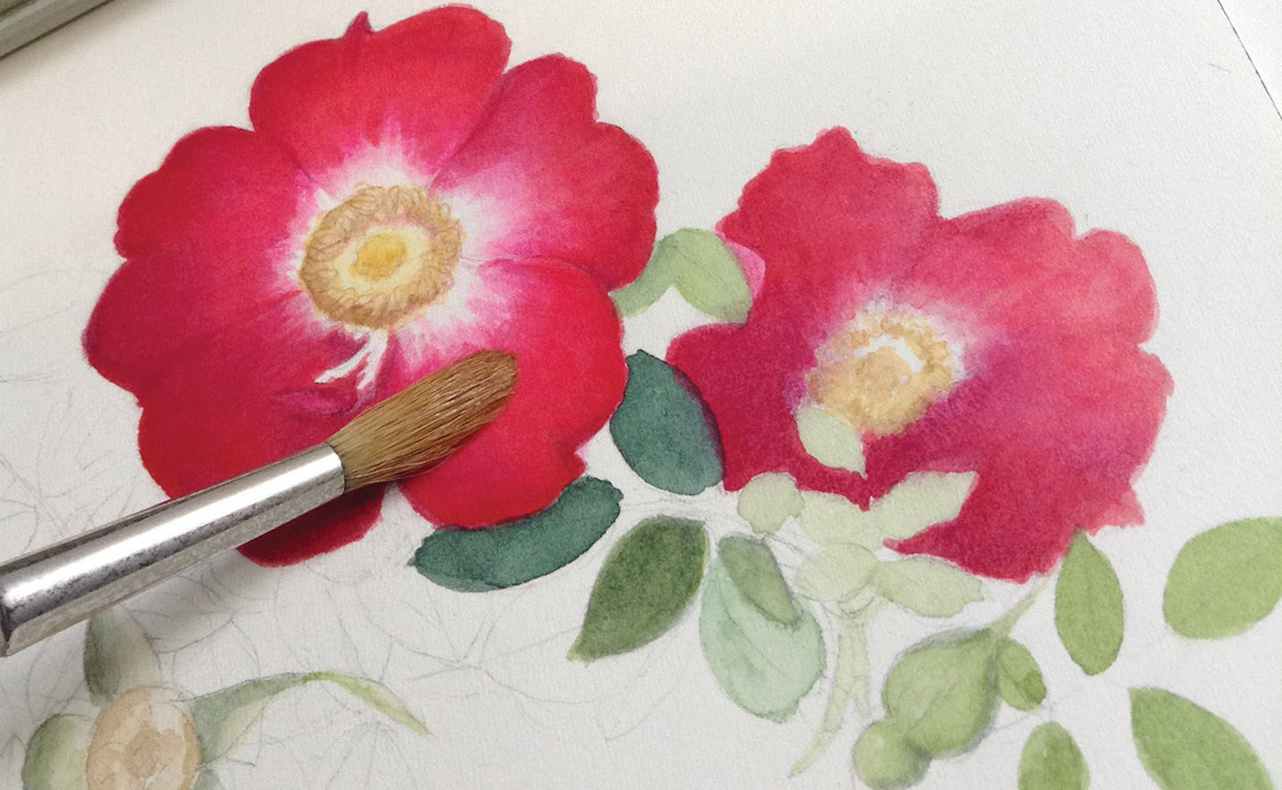 Beginner Watercolor Tips Your Guide To Painting Flowers And Beyond