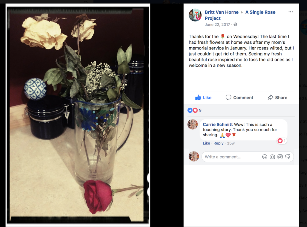 How daily creative acts, such as giving a rose away to a stranger, can transform your life and art | article by Carrie Schmitt and Artists Network