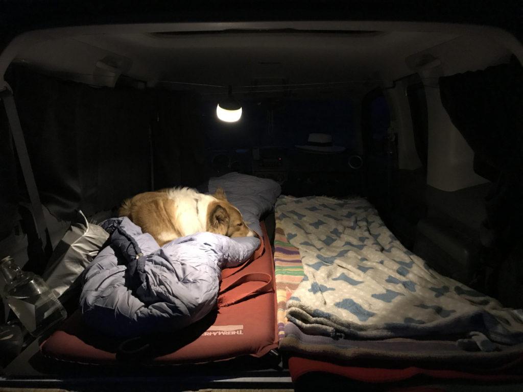 At night van life with Emilie Lee