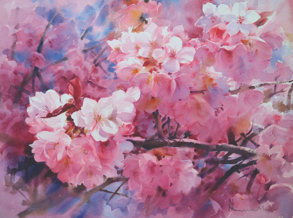 Watercolor flowers: Cherry Blossoms, No. 2 by Adisorn Pornsirikarn (watercolor on paper, 18x24)