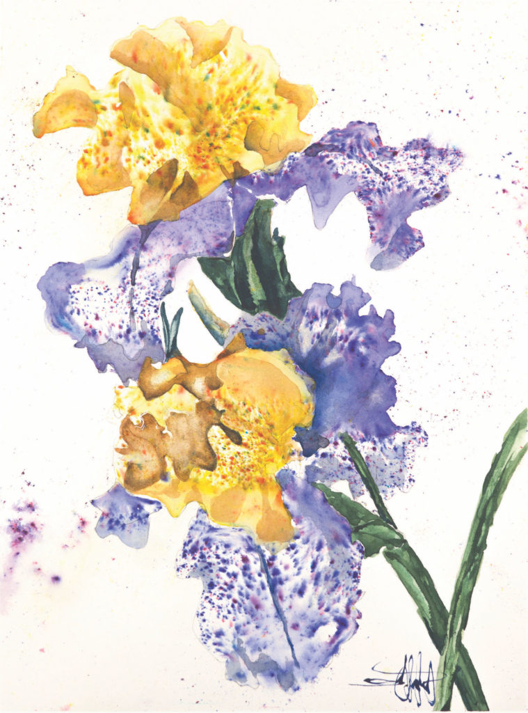 Danny's Taunt by Ward Jene Stroud, Brusho and watercolor on paper | Brusho Basics: How to Add Quick Pops of Color to Your Art