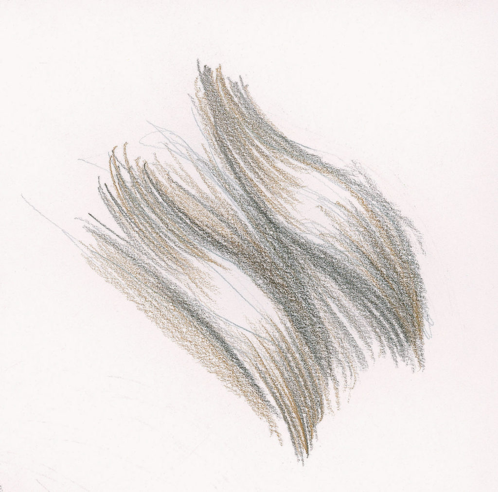 Long Wavy Hair Demo, Step 2 | Lee Hammond | Drawing Hair for Beginners in Graphite and Colored Pencil | Artists Network