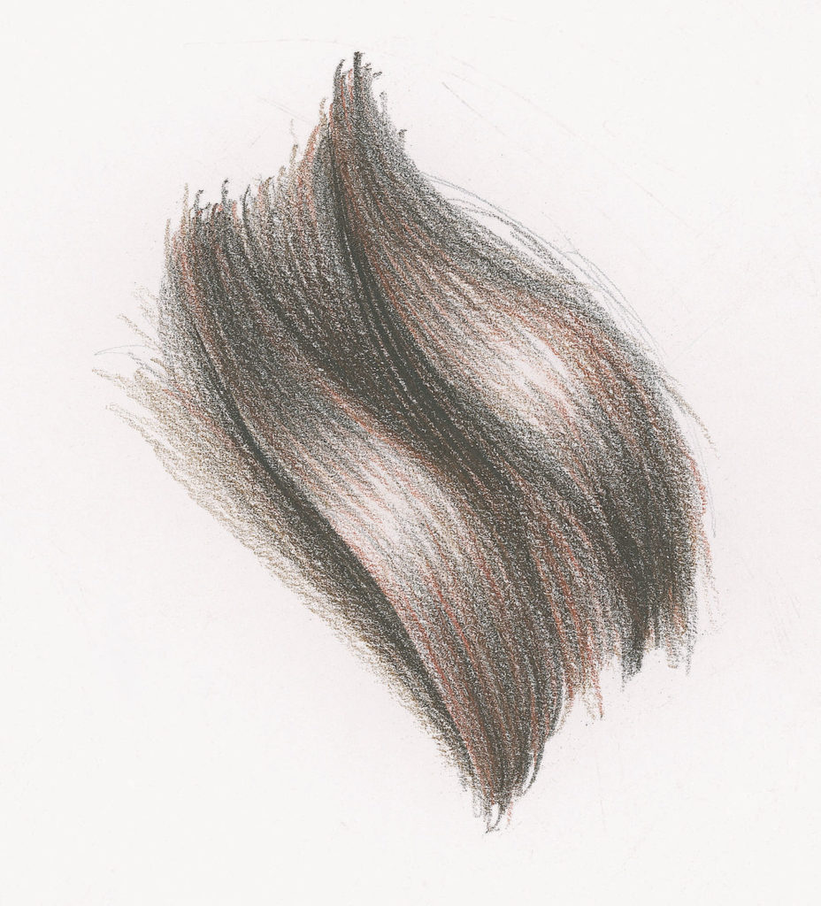 Long Wavy Hair Demo, Step 3 | Lee Hammond | Drawing Hair for Beginners in Graphite and Colored Pencil | Artists Network
