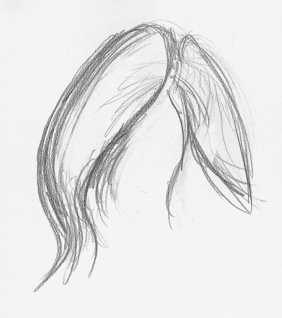 Straight hair demo step 1 lee hammond drawing hair for beginners in graphite