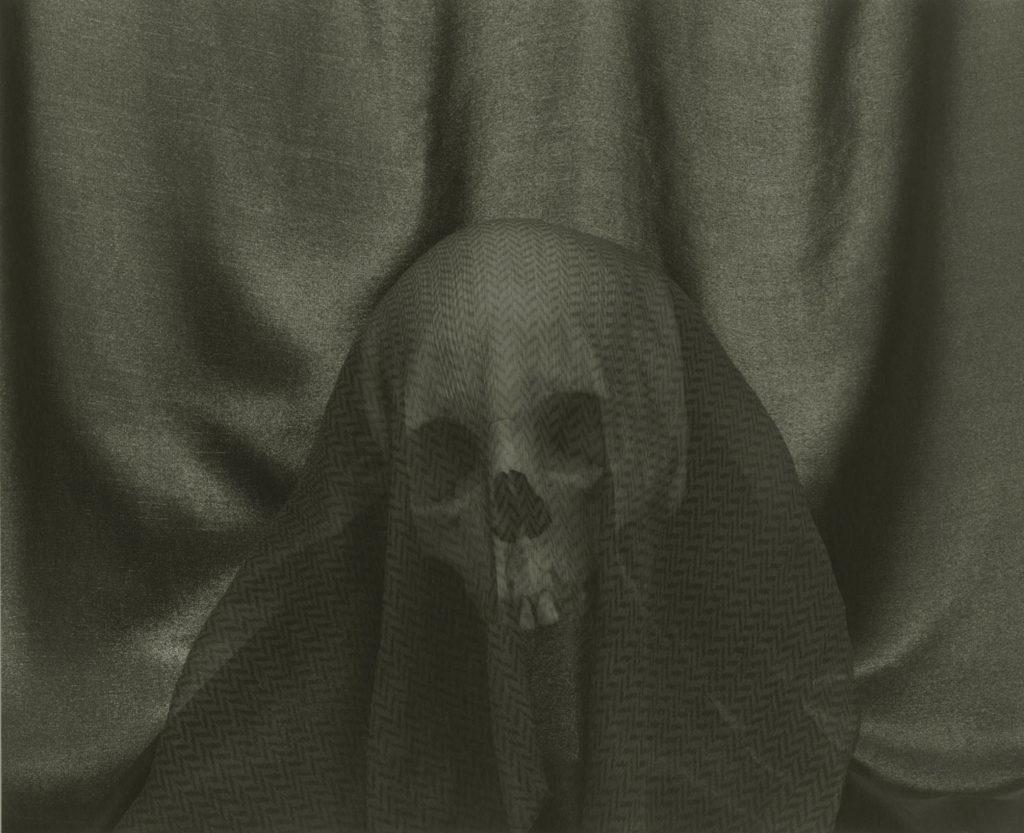 Donald Kuspit Lasting Impression: Doppelgänger #13-37 by Lynn Stern, photograph, 22 x 24
