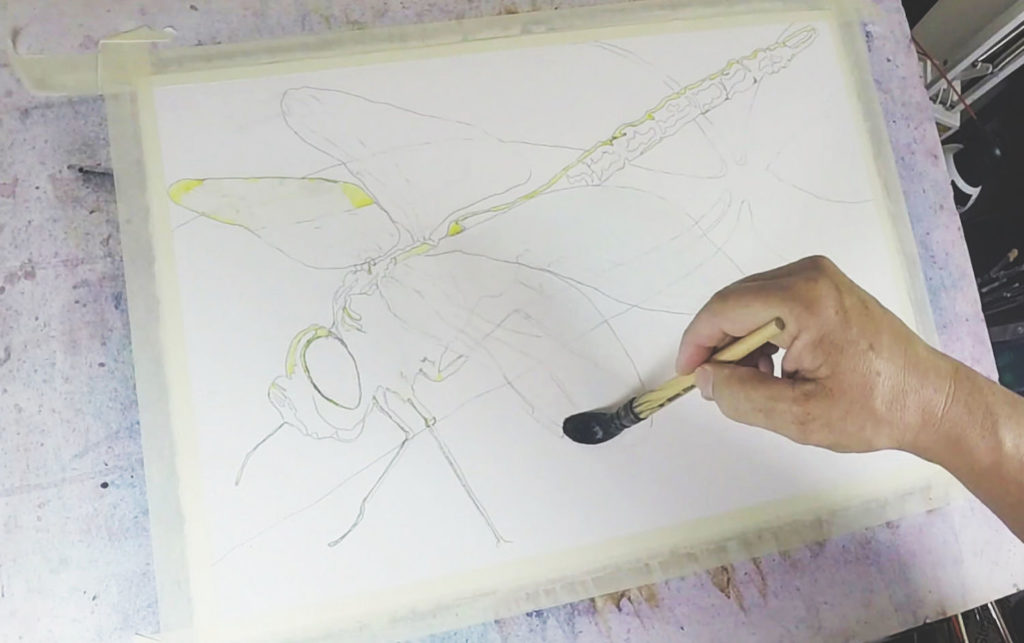 Brusho Demonstration with Ward Jene Stroud, step 1 | Watercolor Artist, Artists Network