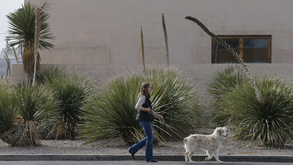A woman walks her dog past the John Chamberlain Building at the Chinati Foundation in Marfa. Scott Halleran / Getty Images