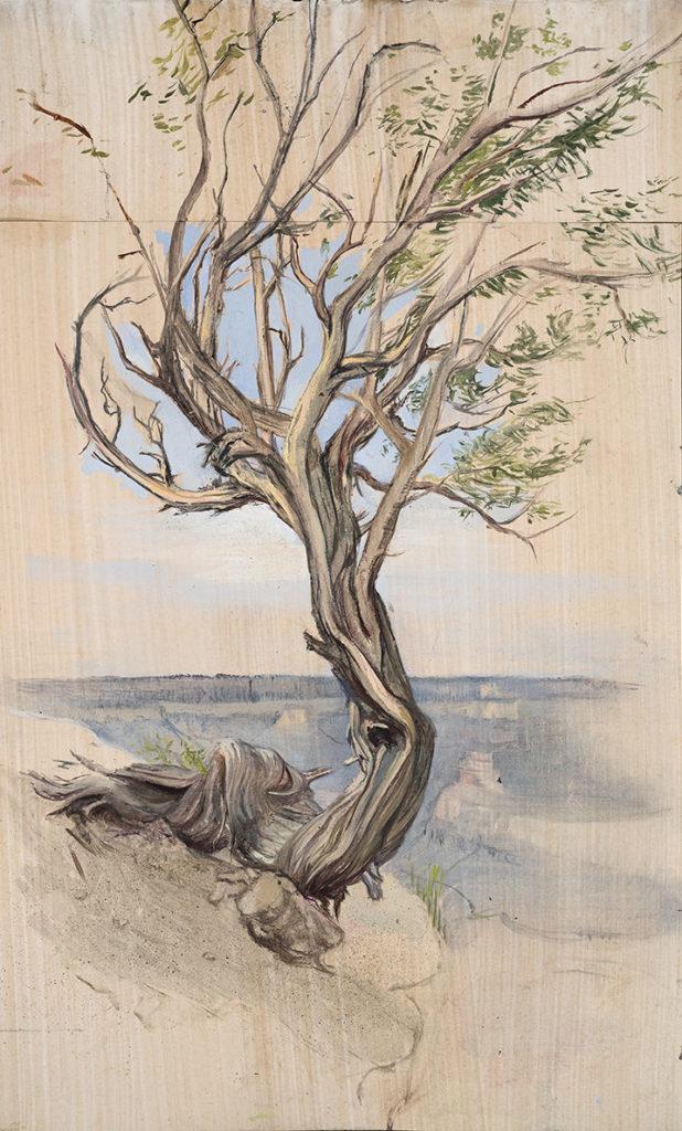 Twisted Tree by Melanie Vote, oil on paper
