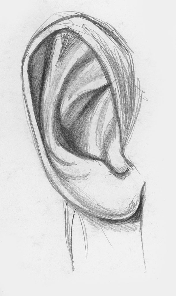 Drawing Ears Demo, Step 2 | Lee Hammond | How to Draw Facial Features for Beginners | Artists Network