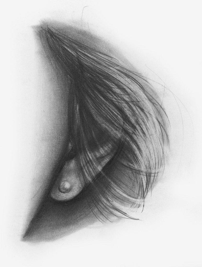 Drawing of Ear, Front View | How to Draw Facial Features with Lee Hammond, Beginner's Guide | Artists Network