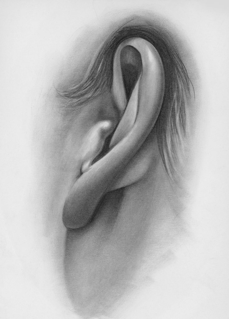 Drawing of Ear, Side-Angle View | How to Draw Facial Features with Lee Hammond, Beginner's Guide | Artists Network