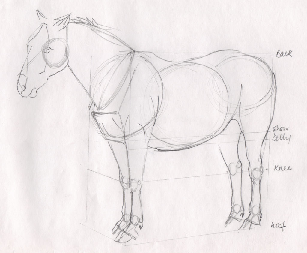 Drawing ideas for beginners: maquette drawing. Ruth Buchanan