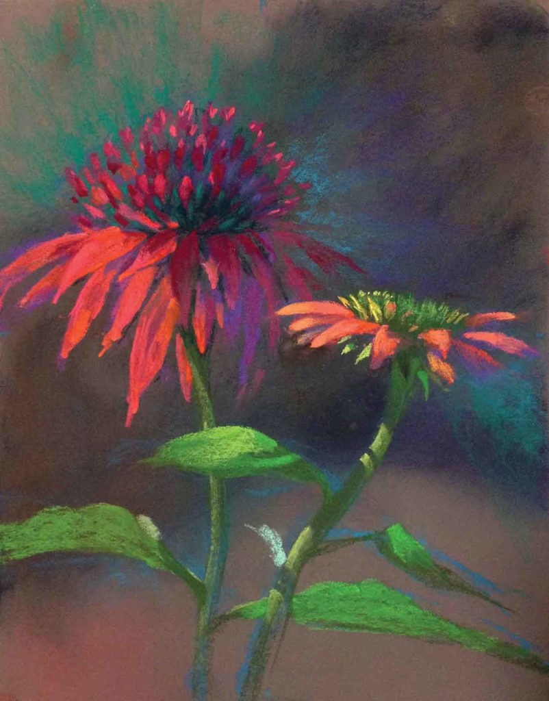 Coneflower Fancy Pants by Jude Tolar | Coneflower | 5 Pastel Color Palettes for 5 Floral Favorites | Artists Network