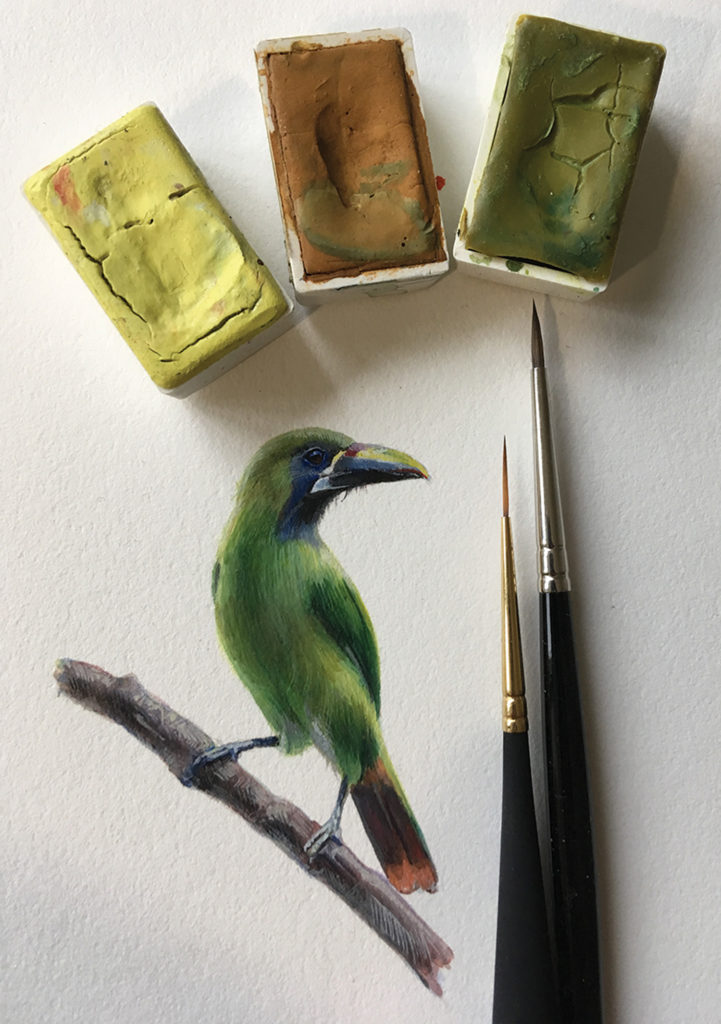 bird paintings: Green Bird by Dina Brodsky (gouache on paper, 6½ x4¼ )