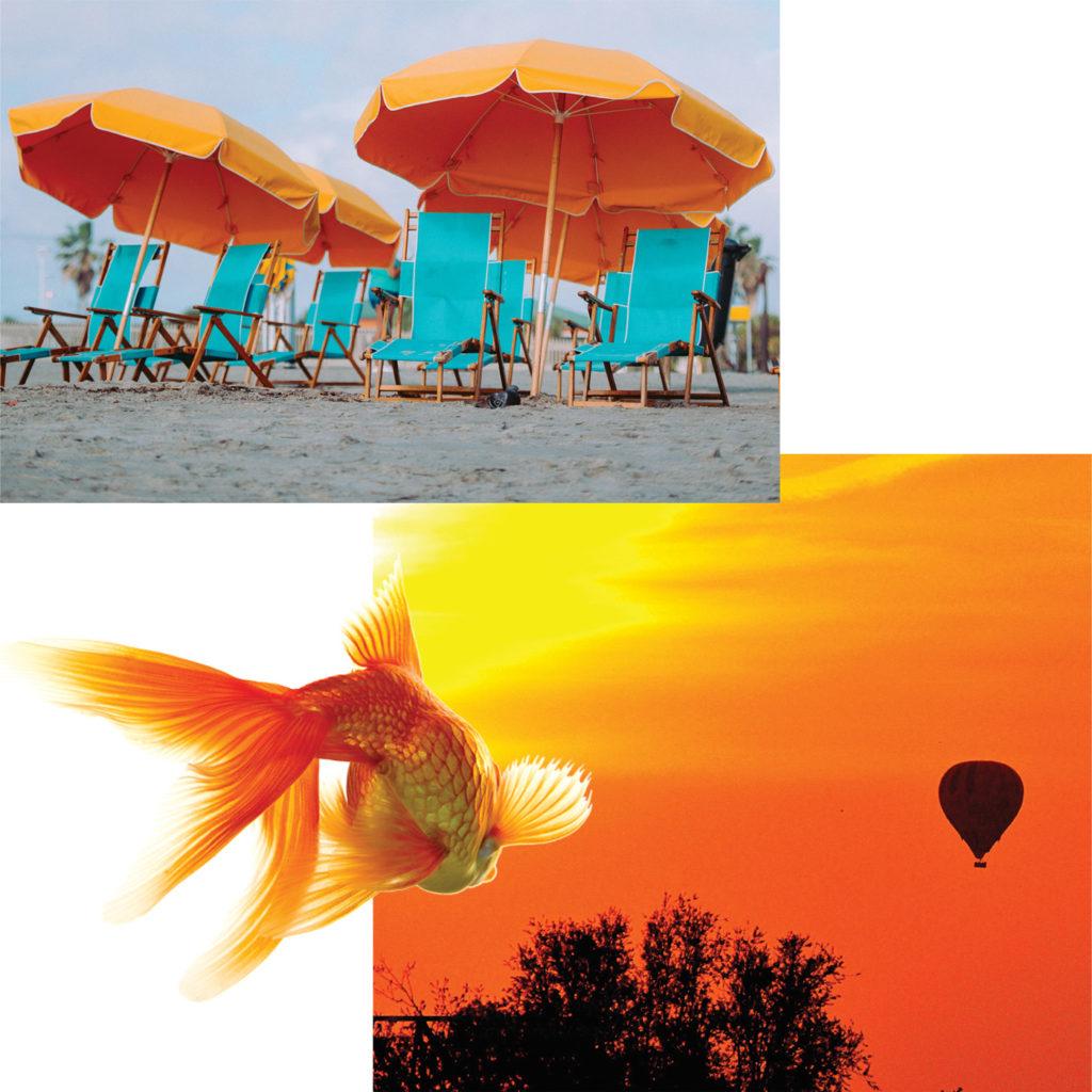 Sunset orange color story