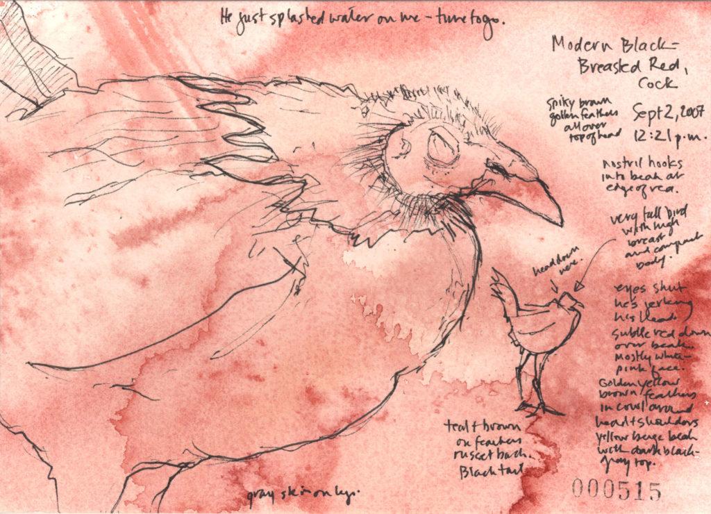 Roz Stendahl bantam art sketches