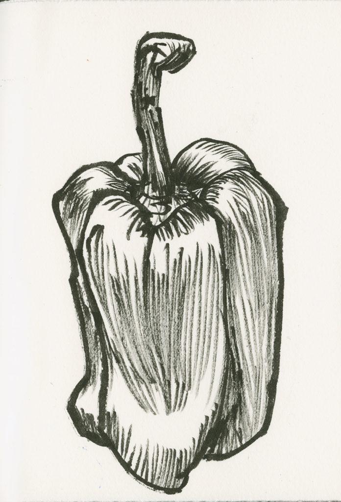 Peppers art sketch by Roz Stendahl