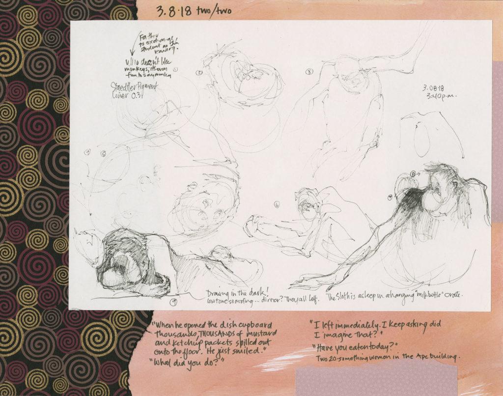 Orangutans art sketches from Roz Stendahl